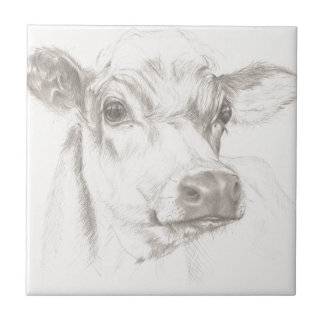 A drawing of a young cow tile