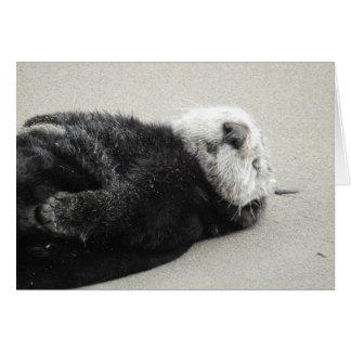 A dreaming sea otter card