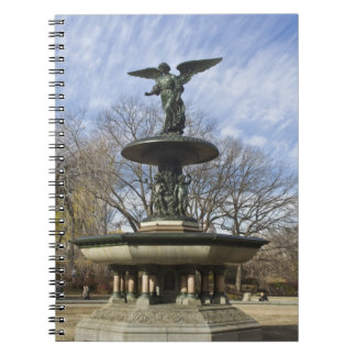 A dry winter Bethesda Fountain in Central Park Notebooks