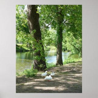 A Ducks Life Poster
