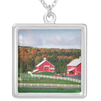 A farm in Vermont near Peacham. RELEASE Silver Plated Necklace
