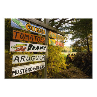 A farm stand in Holderness, New Hampshire. Photo Print