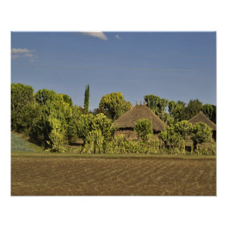 A farmed field in front of thatched roof houses poster