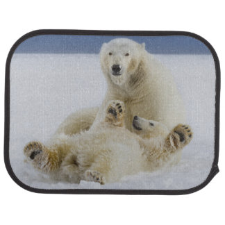 A female polar bear and her cub play in the snow car mat