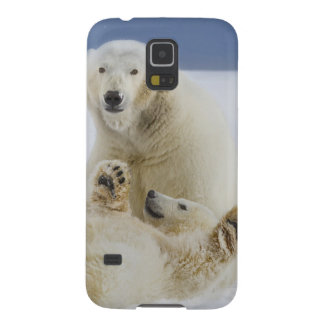 A female polar bear and her cub play in the snow galaxy s5 case