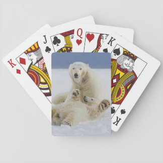 A female polar bear and her cub play in the snow poker deck