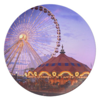 A ferris wheel and carousel at the Navy Pier in Plate