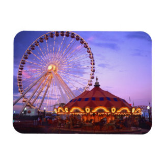 A ferris wheel and carousel at the Navy Pier in Rectangular Photo Magnet