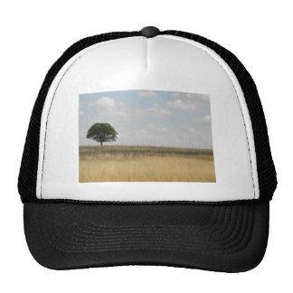 A field in Texas Cap