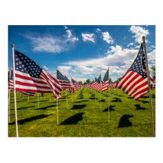 A field of American Flags on V-day Remembrance Postcard