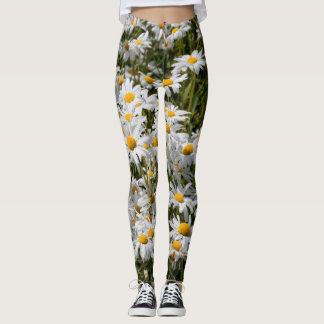 A Field of Oxeye Daisies Leggings