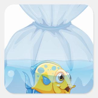 A fish inside the plastic pouch square sticker