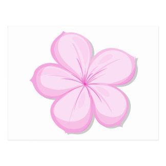 A five-petal pink flower post card