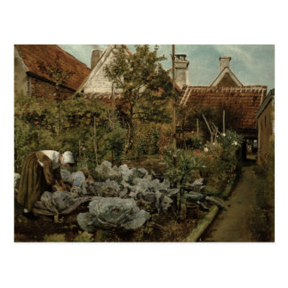A Flemish Garden Postcard