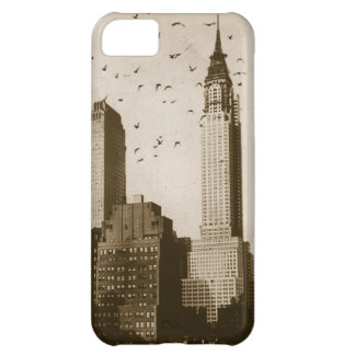 A flock of birds flying iPhone 5C case