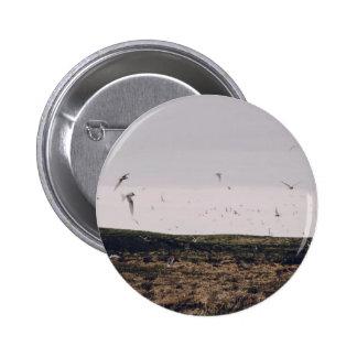 A flock of birds in flight 6 cm round badge