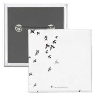 A flock of birds is flying at the sky 15 cm square badge