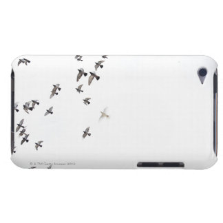 A flock of birds is flying at the sky barely there iPod cover