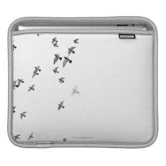A flock of birds is flying at the sky iPad sleeve