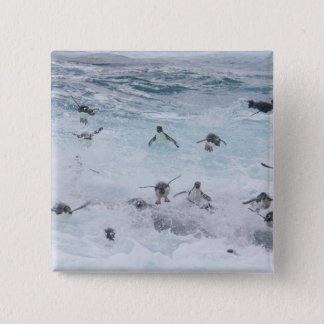 A flock of Rockhopper penguins launch out of the 15 Cm Square Badge