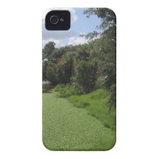 A Florida Waterway Case-Mate iPhone 4 Case