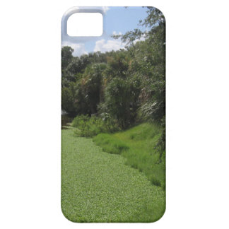 A Florida Waterway iPhone 5/5S Covers