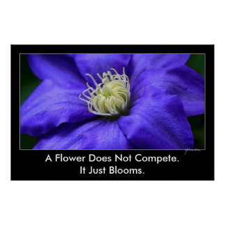 A Flower Does Not Compete Quote 48x32 Inspiration Poster