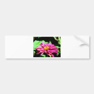A Flower To Brighten Your Day Bumper Stickers