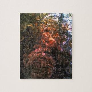 A Foil Roses Puzzle