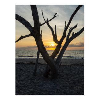 A Folly Sunrise Postcard
