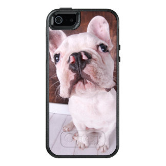 A French Bulldog Puppy OtterBox iPhone 5/5s/SE Case