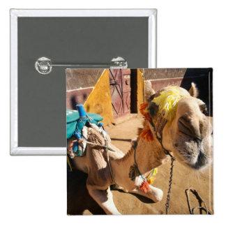 A friendly camel awaits its next rider, Cairo, 15 Cm Square Badge
