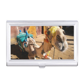 A friendly camel awaits its next rider, Cairo, Business Card Holder
