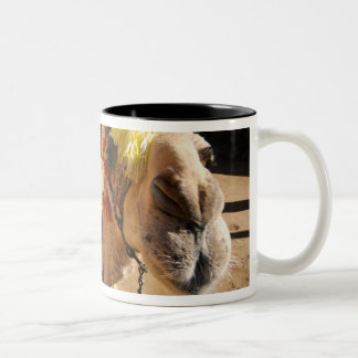 A friendly camel awaits its next rider, Cairo, Two-Tone Coffee Mug