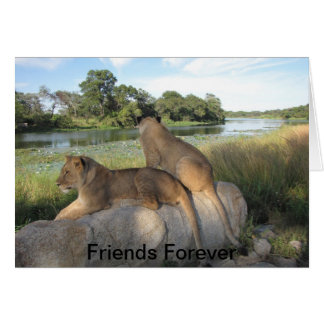 A Friendship Card