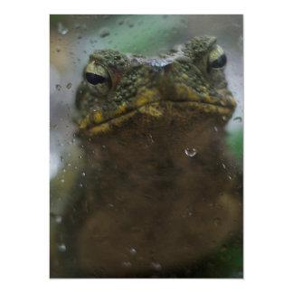 A Frog Day 14 Cm X 19 Cm Invitation Card