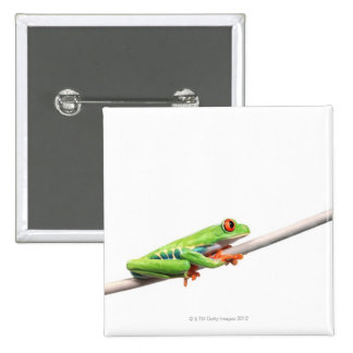 A frog hanging on 15 cm square badge
