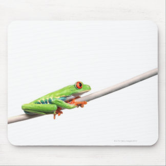 A frog hanging on mouse mat
