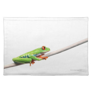 A frog hanging on place mat