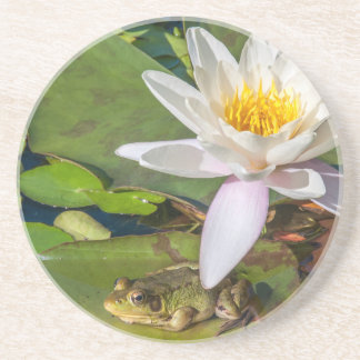 A frog under a flower of water lily beverage coaster