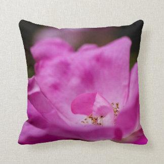 A fuchsia rose cushion