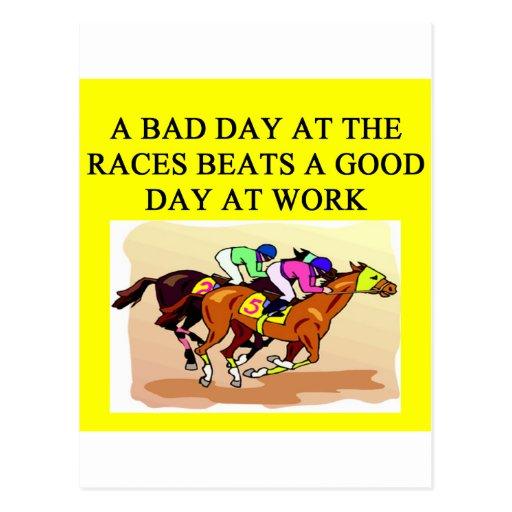 a funny horse player racing joke postcards