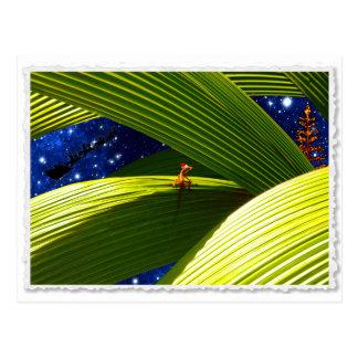 A Gecko Lizard's Tropical Christmas Postcard