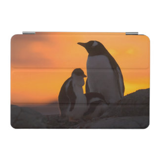 A gentoo penguin adult and chick are silhouetted iPad mini cover