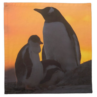 A gentoo penguin adult and chick are silhouetted napkin