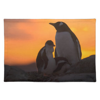 A gentoo penguin adult and chick are silhouetted placemat