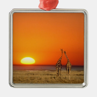 A Giraffe couple walks into the sunset, in Christmas Ornament