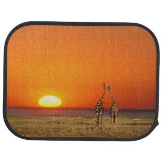 A Giraffe couple walks into the sunset, in Floor Mat