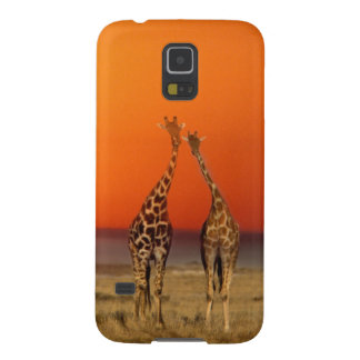 A Giraffe couple walks into the sunset, in Galaxy S5 Cases