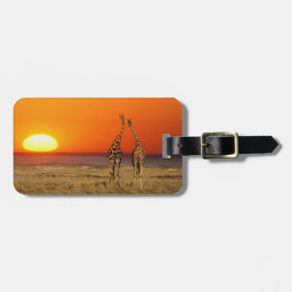 A Giraffe couple walks into the sunset, in Luggage Tag